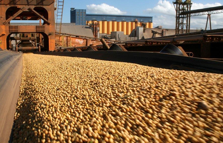 Exportação de soja bateu recorde no 1º semestre