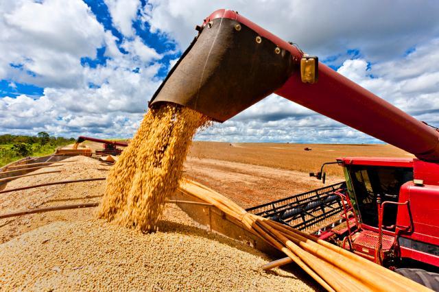 Safra de grãos 2015 chegará a 210,4 milhões de toneladas