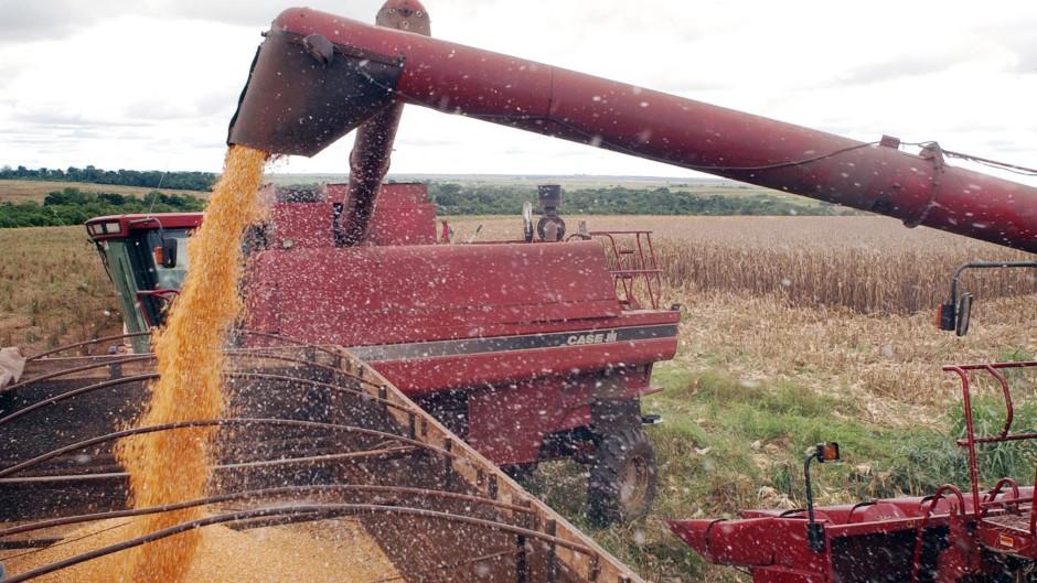 AGRICULTURA: Paraná estima colheita de 22,7 milhões de toneladas de grãos