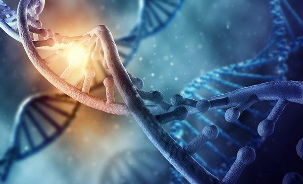 Mapeamento genético determina o risco de câncer em pacientes de risco