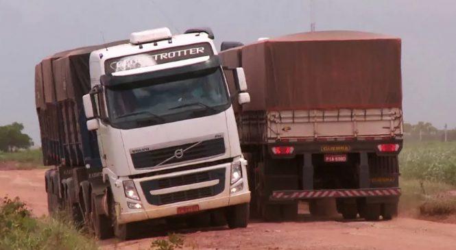 Produtores sofrem para escoar safra por estradas de chão no Sul do Piauí