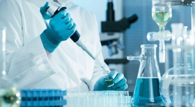 Comissão aprova exame toxicológico como pré-requisito para carteira de motorista A e B