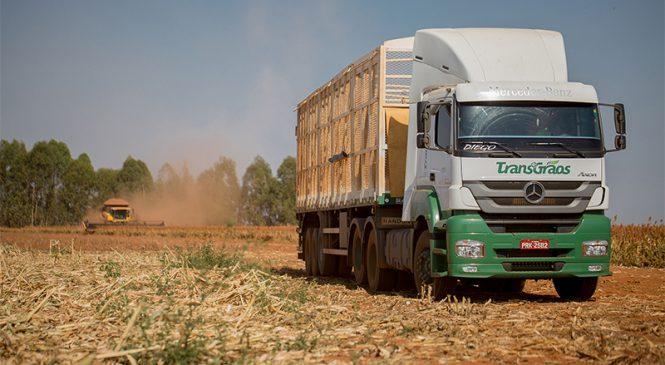 Transgrãos compra 105 caminhões Axor para transporte de milho em diversas regiões do Brasil