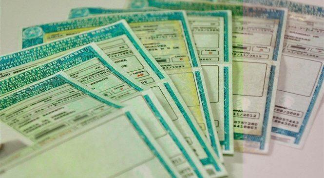 Projeto permite que habilitação seja usada como documento de identidade após vencimento