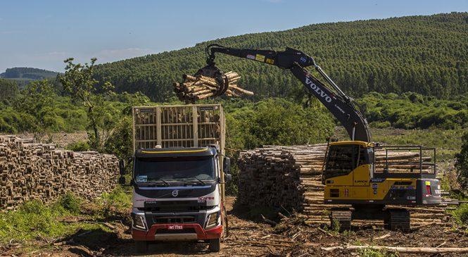Volvo mostra na Expoforest seus caminhões, máquinas e tecnologia para aplicações no segmento florestal