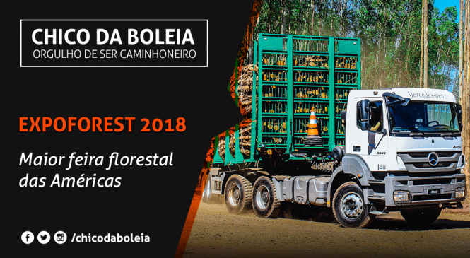 [VÍDEO] ExpoForest 2018