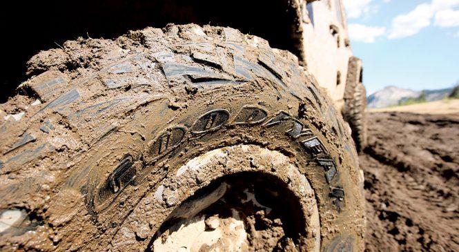 Goodyear fabrica pneus para todas as necessidades