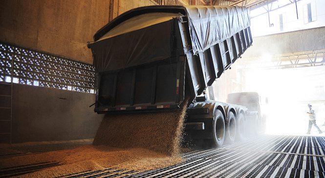 Preços da soja voltam a subir nos portos do BR, mas mercado segue travado pelos fretes