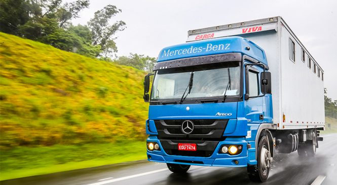 Caminhões Atego transportam 40 cavalos da jovem equipe de salto que representará o Brasil no Chile