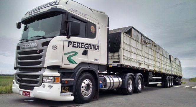 Transportadora Peregrina compra 22 conjuntos de implementos