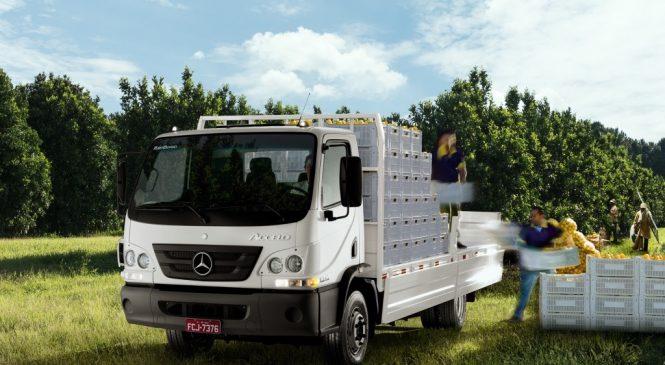 Mercedes-Benz realiza Circuito Ceasa 2019 com caminhões Accelo e Atego.