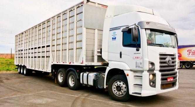 Comissão aprova aumento de altura para veículo de transporte de animais vivos