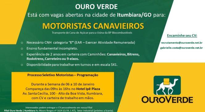 Ouro Verde abre vagas de Motoristas na região de Itumbiara/GO