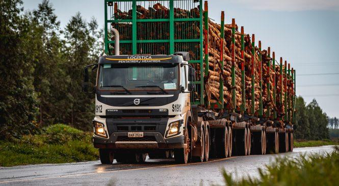 Volvo celebra os 10 anos do FMX, um caminhão para condições extremas