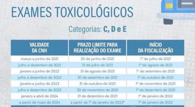 Motoristas que não fizeram o exame toxicológico periódico podem ser multados